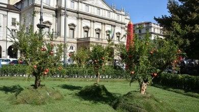 """Piace il giardino in piazza Scala, Sala: """"Idea per il futuro ma serve uno sponsor""""   Foto"""