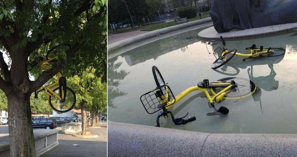 Milano, quando il bike sharing è troppo libero: bici sugli alberi e nelle fontane