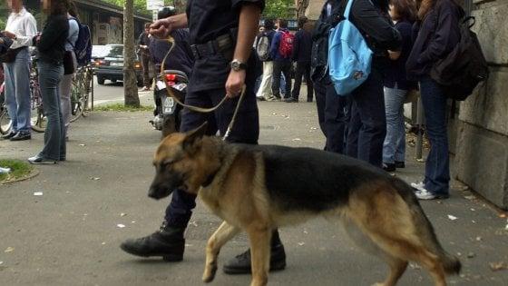 Milano, blitz con i cani antidroga a scuola: due ragazzi arrestati, hanno 16 e 15 anni