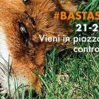 Caccia, il Comune di Milano vieta i manifesti della Lav: