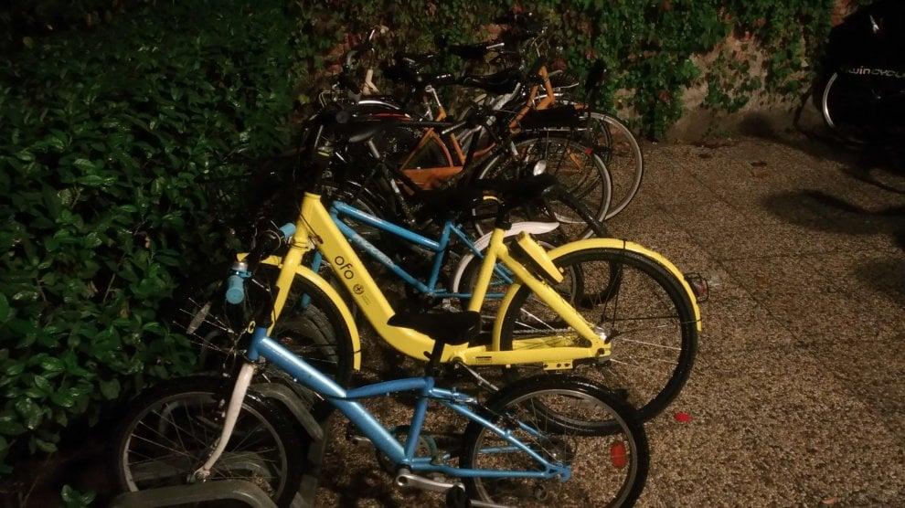 Bikewatching, le vostre foto