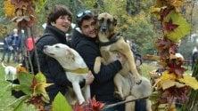 Parco Sempione, nella nuova area cani anche il kit di primo soccorso