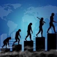 Homo erectus, l'evoluzione della specie arriva in ufficio