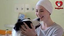 Cani, gatti e conigli  entrano in ospedale:  lo spot è con Cirilli