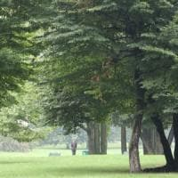 Milano, settantenne trovata cadavere in un parco pubblico di Affori: giallo