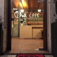 Brescia, minacce di morte degli animalisti ai titolari del primo gufo-bar d'Italia