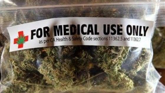 Cannabis terapeutica e biotestamento, no della Regione Lombardia ai progetti di legge