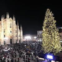 Panchine o sculture per Rogoredo: la seconda vita di Vittorio, l'albero di Natale di piazza Duomo