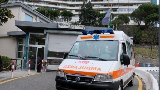 Bergamo, bimba di 14 mesi azzannata alla testa dal cane di famiglia: gravissima