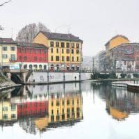 Gabbiani in volo e riflessi sull'acqua: l'omaggio fotografico ai Navigli in inverno