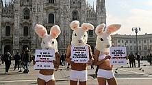 Duomo, gi animalisti  di Peta   vestiti da coniglio