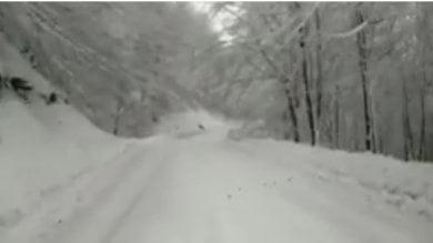 Ondata di gelo sull'Italia: è arrivato il burian dalle steppe siberiane