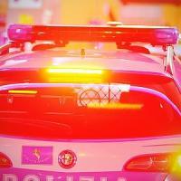 Bergamo, esplode bomba carta sotto l'auto di un prof: nessun ferito, ma nell'ordigno c'era dinamite