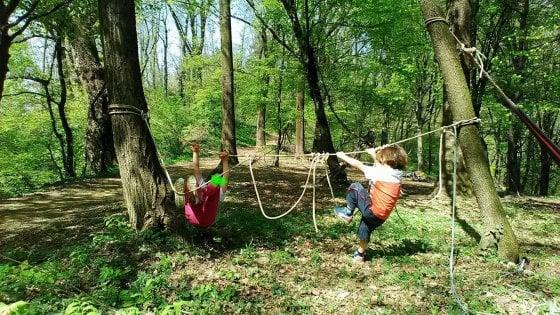 Bergamo, a Valbrembo l'asilo è nel bosco: niente muri, banchi e maestre