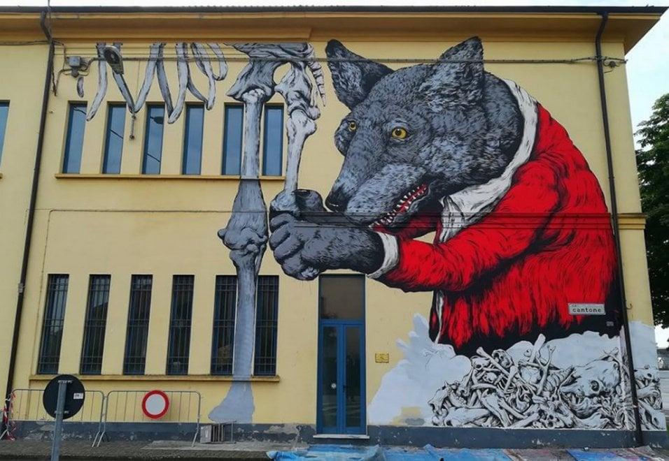"""Cremona, la street art incontra la paleontologia:  il """"lupo di Darwin"""" sulla facciata del museo"""