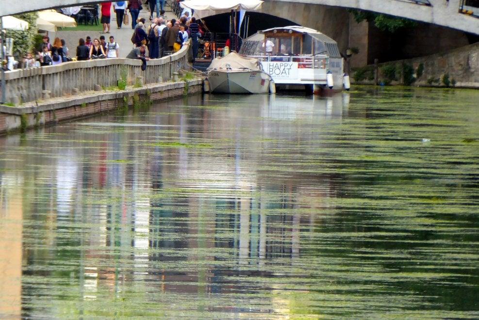 I Navigli come 'Il ponte giapponese' di Monet: l'effetto alga è quasi artistico