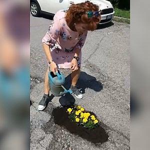 Fiori nelle buche stradali: il video della consigliera comunale scatena la battaglia sui social