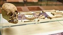 Milano, ossa romane e mura medievali: in mostra i reperti archeologici dagli scavi per la M4