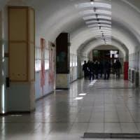 """Milano, topi nel carcere di Opera: """"Anche in infermeria"""", la lettera di protesta dei..."""