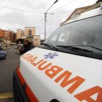 Milano, si schianta contro un albero e muore:  il cane lo veglia e aspetta