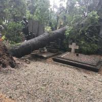 """Nubifragio a Monza, danni al cimitero: """"Chiuso per grandine"""""""