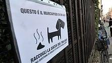 Escrementi dei cani,  padroni incastrati  dalla banca dati del dna:  arrivano le prime multe