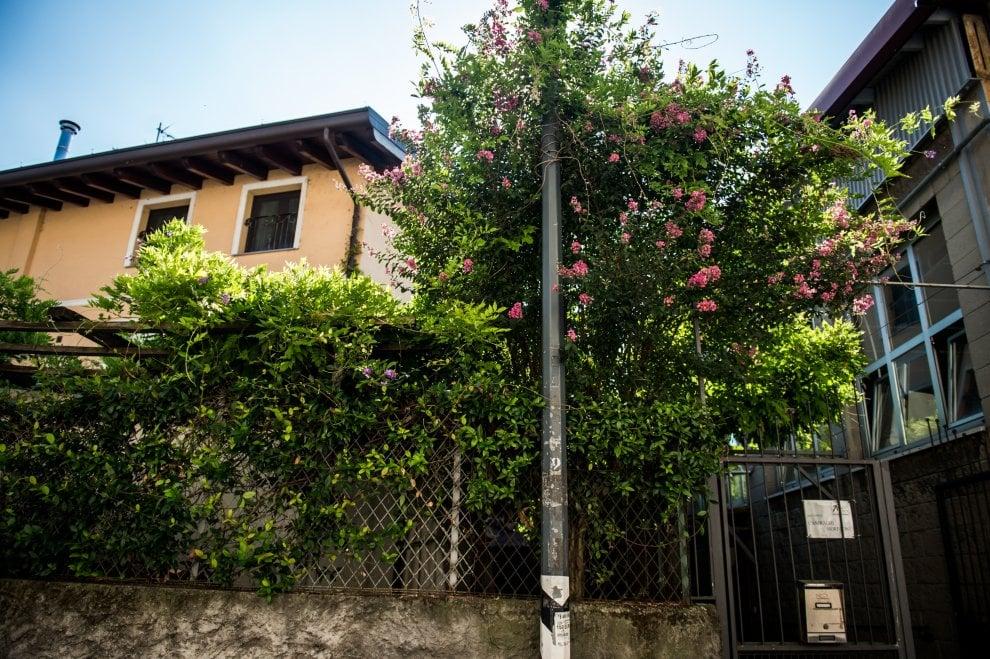 Milano dalle periferie al centro, la bocciofila di zona Ripamonti con il glicine di Leonardo