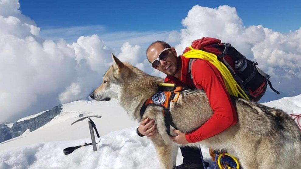 Valle d'Aosta, il cane alpinista conquista i 4000: un lupo cecoslovacco in cordata sulla cima del Breithorn
