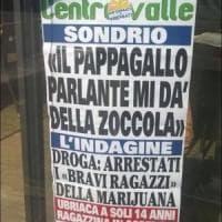 Valtellina, giornale locale racconta la storia del pappagallo stalker: la