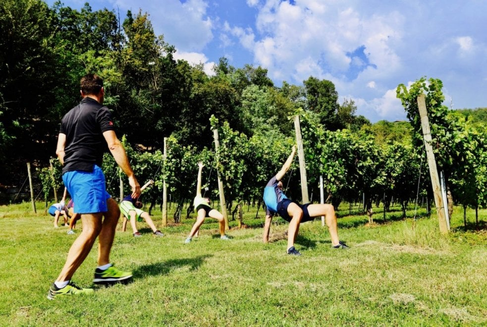 """In Franciacorta arriva il fitness tra le vigne con il """"personal wine trainer"""""""