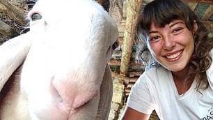 Selfie con pecora: a Bergamo va in scena il concorso fotografico più folle di sempre