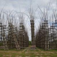 """Lodi: danneggiata dal vento la """"Cattedrale vegetale"""""""