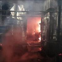 Cento mici morti nel rogo al gattile di Rho: con i pompieri nel ricovero distrutto