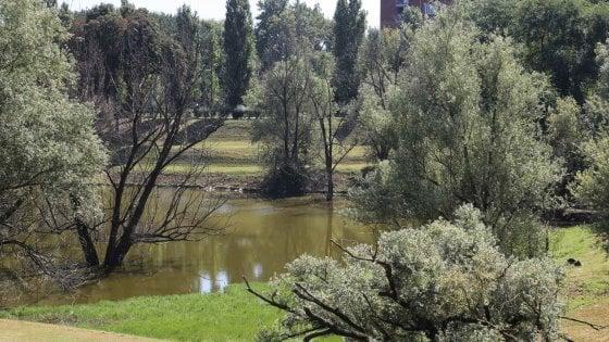 Milano, il Comune rilancia Parco Lambro: più alberi e nuove aree per fare sport