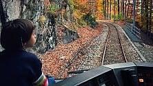 Il treno del foliage  panorami autunnali  a portata di finestrino