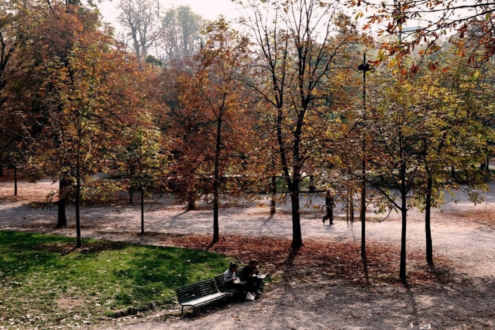 Lo spettacolo del foliage nei parchi e nei giardini di - Ufficio parchi e giardini milano ...