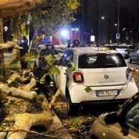 Raffiche di vento a Milano: arriva l'autunno tra alberi abbattuti e case