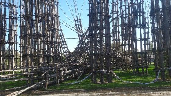 """Semidistrutta dal vento la """"Cattedrale vegetale"""" di Lodi"""