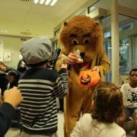 La Scientifica, i bambini e un leone: a Milano la caccia al ladro si fa in ospedale