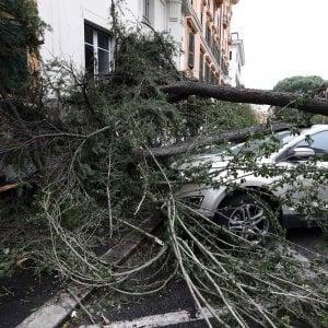 Maltempo: un morto nel Bresciano, alberi caduti e allagamenti a Milano