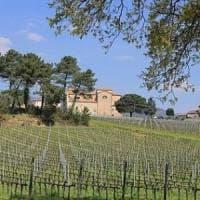 Agricoltura biodinamica, è polemica per il convegno al Politecnico di Milano