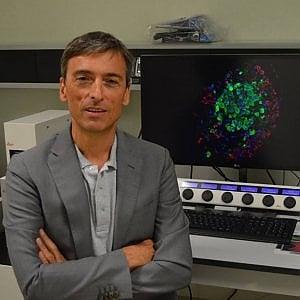 """Milano, una nuova cura per la lotta al diabete: """"Sperimentazione nel 2021"""""""