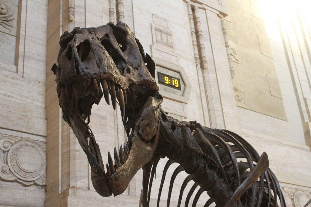 Milano, il T-Rex più grande del mondo è in stazione Centrale: impossibile non fotografare