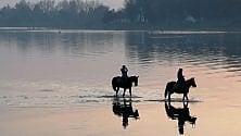 L'Idroscalo come il set  di un film: il guado  dei cavalli al tramonto