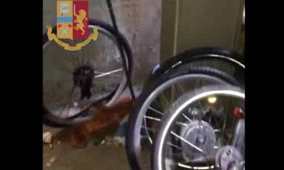 Cantine trasformate in laboratori per smontare le bici a noleggio rubate: la scoperta della polizia a Milano