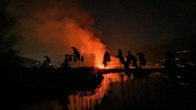 Brucia la riserva naturale delle Torbiere del Sebino nel bresciano: la pista dei piromani