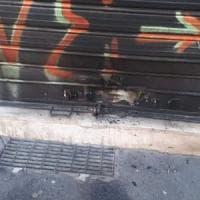 Milano, incendiata la saracinesca della Lega in zona Darsena