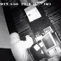 Telecamere riprendono furto in un pub della bergamasca, i titolari fanno
