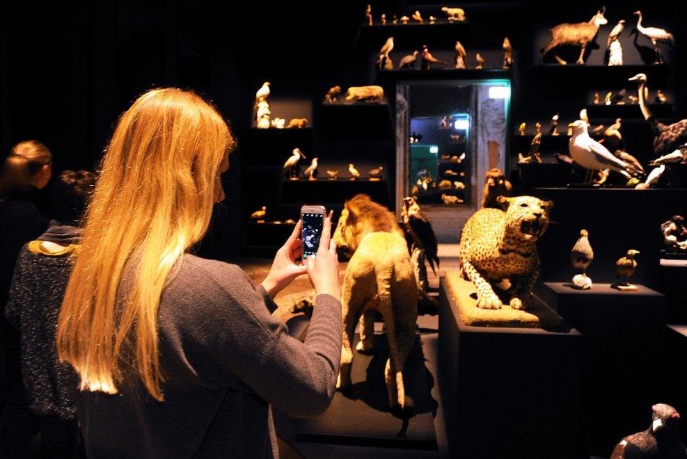 Milano, il Ciclo di Orfeo in mostra nella Sala delle Cariatidi