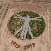 Un Uomo vitruviano nel campo di tulipani in Brianza: land art per le celebrazioni di Leonardo